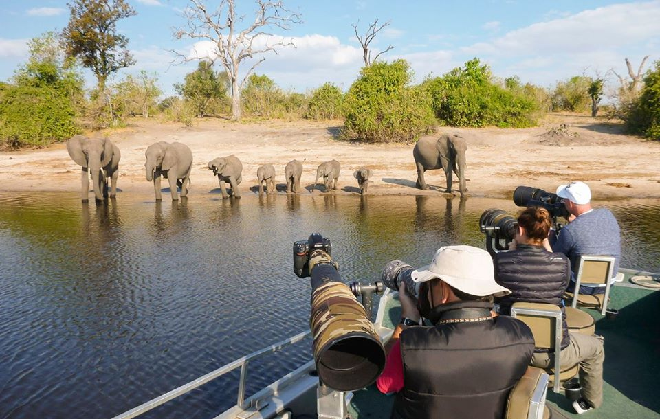 Chobe River Photo Safari