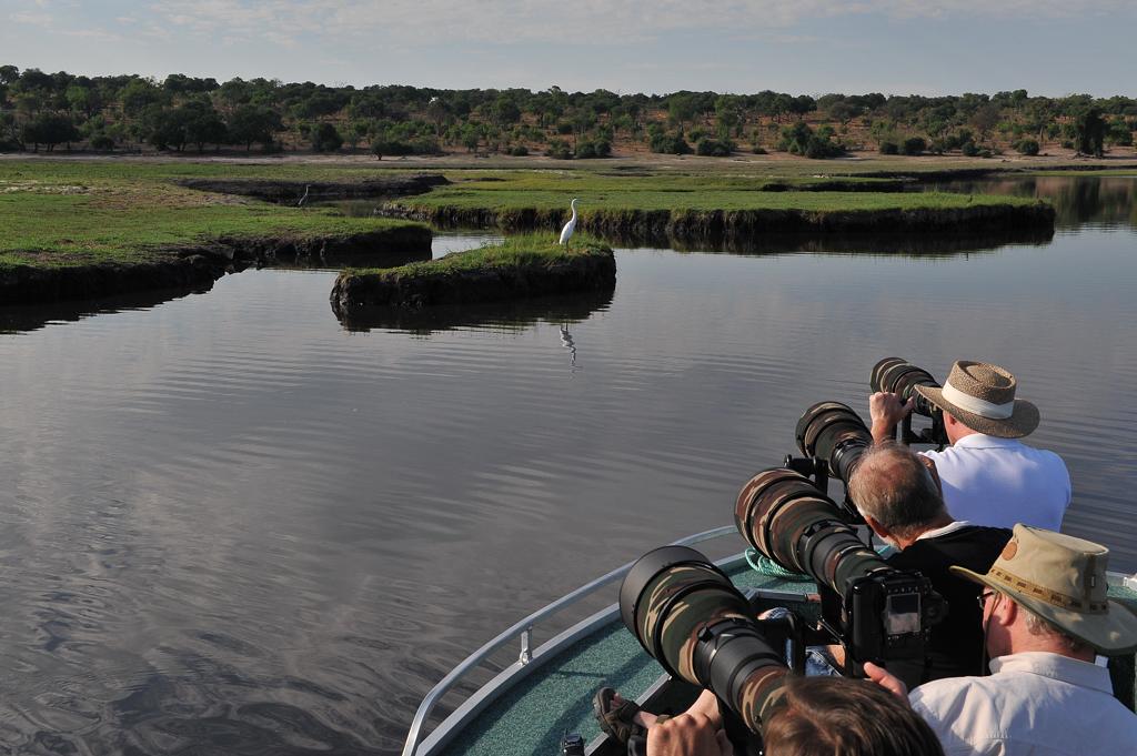 Chobe River Avi Photo Safari